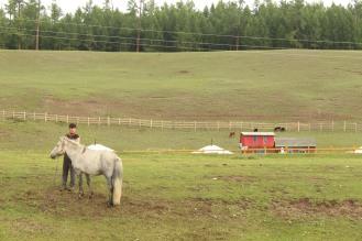 Mongolo con cavallo.