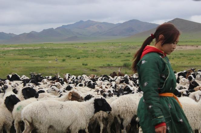 Donna pastore con il suo gregge.