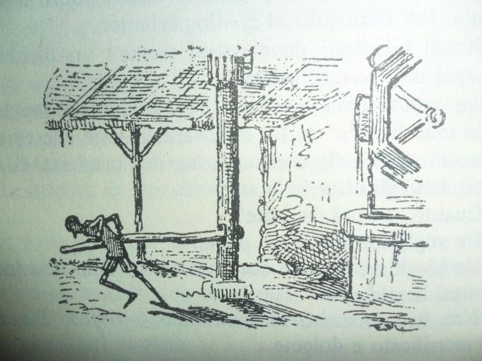 Bindolo Pinocchio disegno Mazzanti