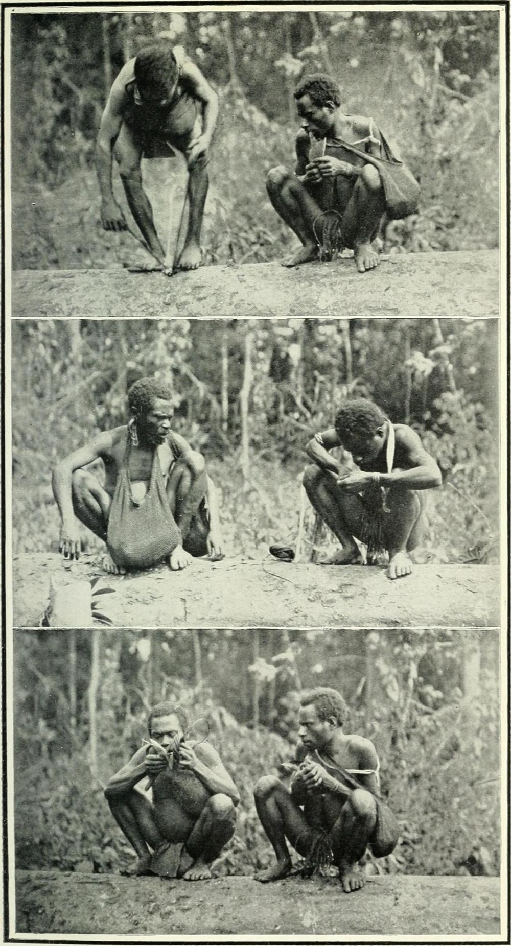 The_land_of_the_New_Guinea_pygmies;_an_account_of_the_story_of_a_pioneer_journey_of_exploration_into_the_heart_of_New_Guinea_(1913)_(14579339729)